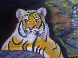 Picturi cu animale tigrisor