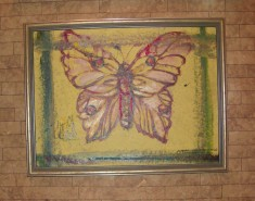Picturi cu animale Fluture