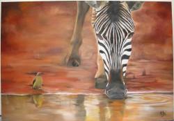 Picturi cu animale Zebra