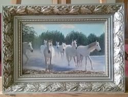 Picturi cu animale cai albi 32