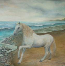 Picturi cu animale Cal alb pe plaja de la SULINA