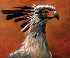 Picturi cu animale Pasare 1