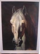 Picturi cu animale Cap de cal alb