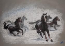 Picturi cu animale Iarna