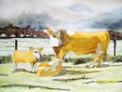 Picturi cu animale Rural