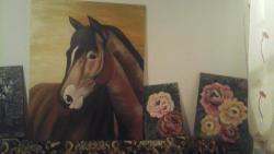 Picturi cu animale cal frumoooss