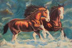 Picturi cu animale Cai in zapada