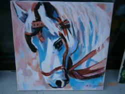 Picturi cu animale portret cal 1
