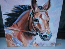 Picturi cu animale portret cal 2