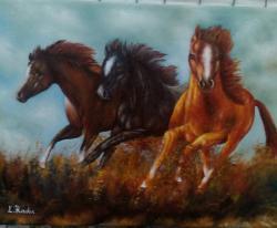 Picturi cu animale alti cai35-40