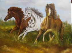 Picturi cu animale Caii