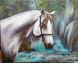 Picturi cu animale un cal alb