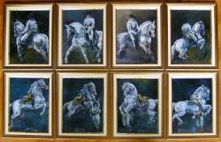 Picturi cu animale  colectia: dresage alure