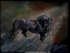 Picturi cu animale Friezians