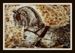 Picturi cu animale Special decor for wall