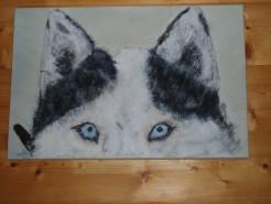 Picturi cu animale Husk