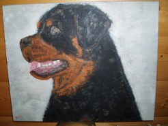 Picturi cu animale Rotti