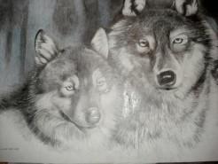 Picturi cu animale Grafica artistica cu animale 3