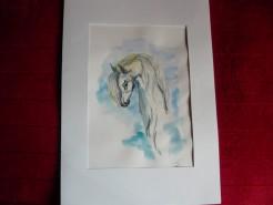 Picturi cu animale Tristete alba