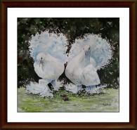 Picturi acuarela Porumbei rotati