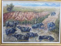 Picturi cu animale Parlament 90-93...