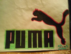 Picturi cu animale Puma