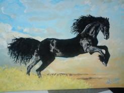Picturi cu animale Cal salbatic