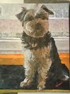 Picturi cu animale Harry