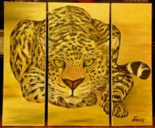 Picturi cu animale Felina