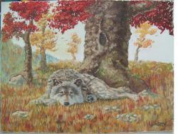 Picturi cu animale Lup toamna