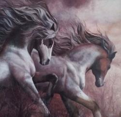 Picturi cu animale cai salbatici