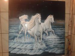 Picturi cu animale cai alergand noaptea