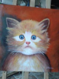 Picturi cu animale puiul de pisica