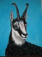 Picturi cu animale Capra neagra