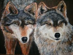 Picturi cu animale Lupi