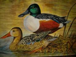Picturi cu animale Pe lac