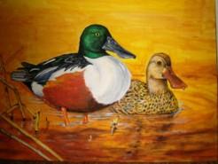 Picturi cu animale Pe lac 1