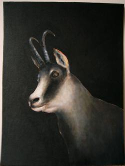 Picturi cu animale Portret de capra neagra