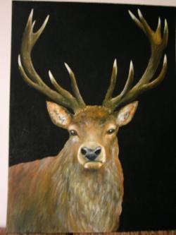 Picturi cu animale Portret de cerb