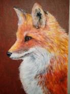 Picturi cu animale Vulpe 2