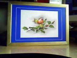 Picturi cu flori  boboc de trandafir