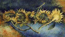 Picturi cu flori f. soarelui
