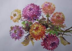 Picturi acuarela Crizanteme