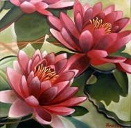Picturi cu flori Nuferi unici