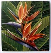 Picturi cu flori Pasarea paradis