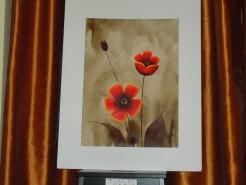 Picturi cu flori Din gradina