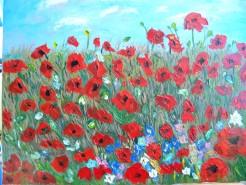 Picturi cu flori Camp de maci