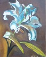 Picturi cu flori Crin