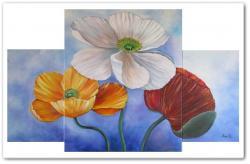 Picturi cu flori Triptic cu maci -