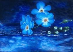 Picturi cu flori Feeling blue